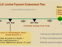 example LIC Limited Payment Endowment Plan