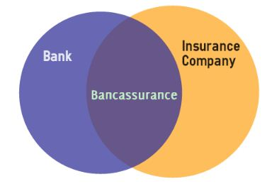 Bancassurance Insurance Brokers