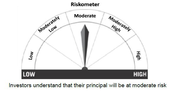 Riskometer MF Product labeling Risk levels