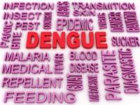 Apollo Munich's 'Dengue Care' Health Insurance Plan : Features & Details