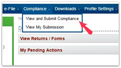 Compliance Tab Efiling Account pics