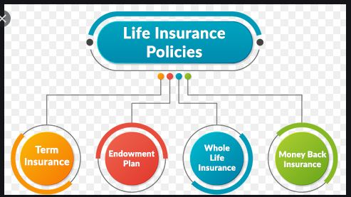 4 Popular types of Traditional Life Insurance Plans in India